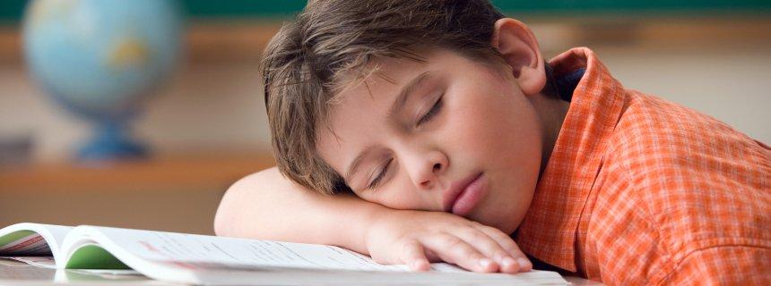 Student asleep at his desk per Spiegel online